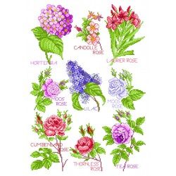 005 Blütenzauber